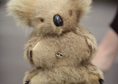 Theresa-Koala_800px